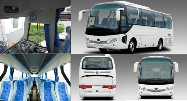 luxury bus services