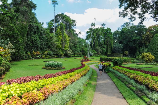 royal-botanical-gardens-kandy